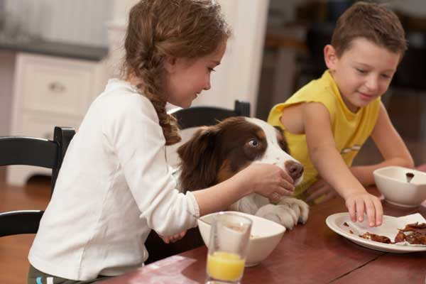 a55a3248fb60 Το πως θα ζει ο καθένας με το σκύλο του είναι καθαρά δική του υπόθεση