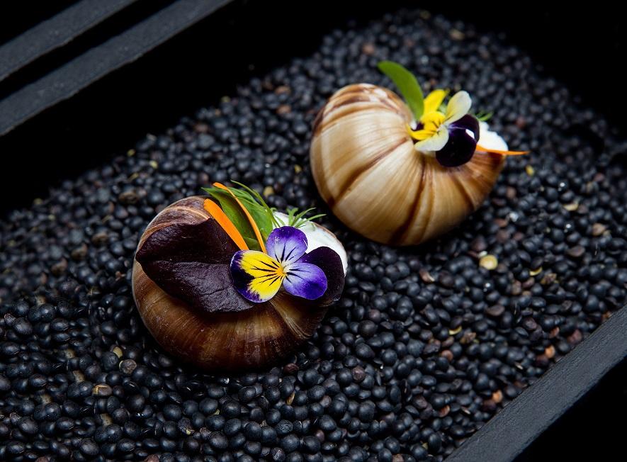 escargot_shells-by_andreas_klaydianos_uma.jpg
